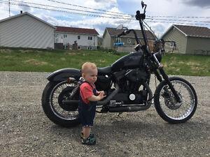 Harley Davidson - Sportster 883 monter 1200