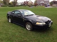 1999 Ford Mustang 35th Anniversary Editiion Coupe (2 door)