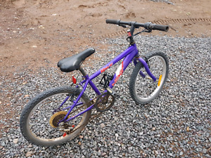 14 inch Girls Bicycle