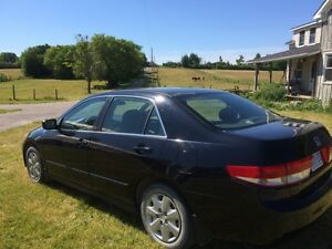2003 Honda Accord Kawartha Lakes Peterborough Area image 1