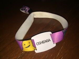 Osheaga pass for sunday with staff acces 180$