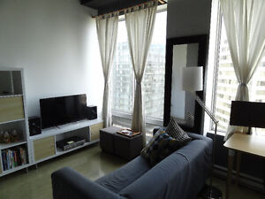 Fully Furnished Downtown Suite in New Cambridge Lofts