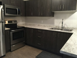 Beautiful newly constructed 2 bedroom
