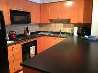 Roommate wanted for King West Location