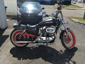 Superbe Harley Davidson Custom