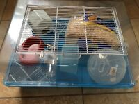 Hamster cage for sale with full set up Bargain!