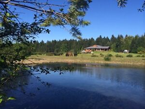Tranquility at WhatAView  Farm - rent weekly