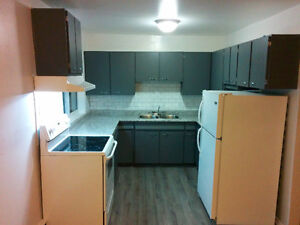 3 Bedroom Completely Updated Apartment close to Algoma U.