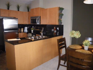 Fantastic 2 bedroom condo with cable,internet,power
