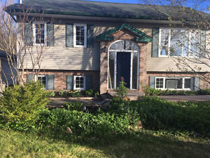Porters Lake – Beautiful 4 Bedroom 2 Bathroom Home with Shed!
