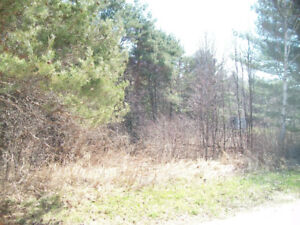 In town building lot close to all amenities in Sundridge $16,800