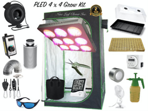 Grow Cannabis at Home - Grow Tent, LED lighting, Filters & Fans!
