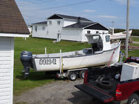 25Ft fishing Boat with 100hp Motor and trailer