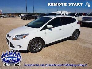 2013 Ford Focus SE   - $96.51 B/W