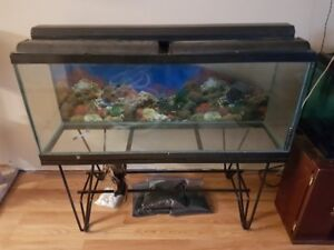 Large tank with Stand, Two hoods to cover