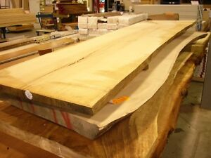 LIVE EDGE TABLE TOPS / COUNTER TOPS / MANTLES
