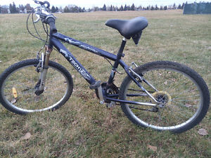 Adult sized bicycle for sale