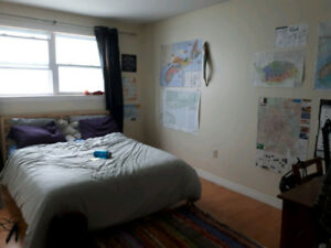 Room in 3 bedroom apartment across from SMU