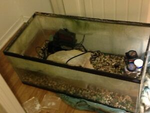 55G tank with 2 filters and heater!