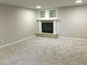 Large Bright Basement Suite, Newly Renovated!