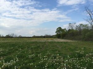 3 Acres of Land for Rent on Six Nations