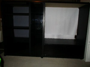TV/AV entertainment unit