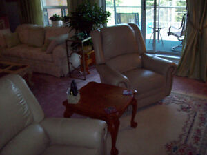 UPSCALE FURNISHED APARTMENT 3 month winter rental