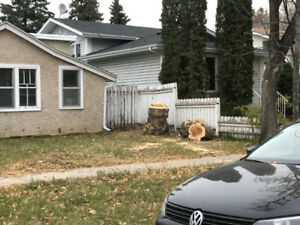 Free Firewood For Pickup