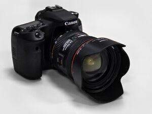 Canon 70d & EF24-105 L IS & Canon 50mm   $1950 Strathcona County Edmonton Area image 3
