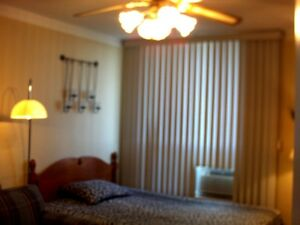 Large furnished room available in 3 bedroom penthouse apartment.