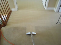 Syndicate Carpet Cleaning as low as $69!! No Appointment needed!