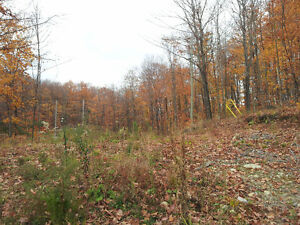 5 acres for sale in Val-des-Monts Gatineau Ottawa / Gatineau Area image 4