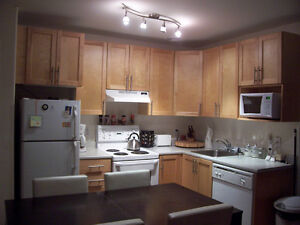 Acadia Suites Downtown- 1 Bedroom Avail NOW!