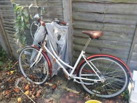 Woman's Bronx Londoner bike