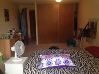 Shared Two bedroom Apartment For Rent near Conestoga College