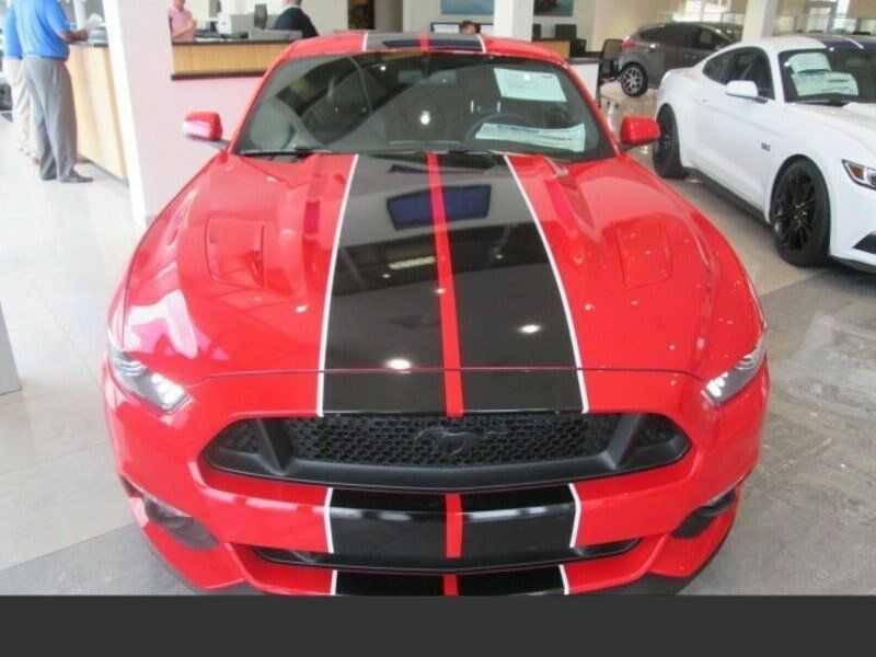 """2015 2016 2017 Mustang 2 color 10"""" Twin Rally stripes Stripe Graphics Decals"""