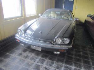 Jaguar Convertable
