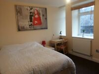 2 Lovely double room in a great flat in Streatham