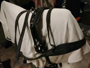 Harnais Cheval en Cuir Leather Harness