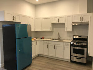 322 Queen St. Unit 7- Renovated 2 BR Apartment Downtown!