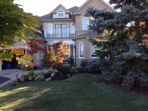 LANDSCAPING SERVICES GREAT PRICES CALL CHRIS