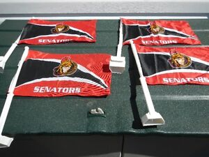 Sens car flags