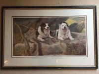 Large Framed Print of Collie Dogs