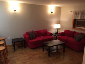 Fully Furnished, 2 bedroom, Executive Apart. downtown St.Johns