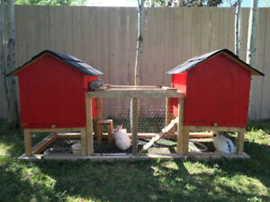 Solid, homemade rabbit hutch with 2 bunnies
