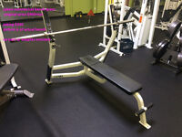 cybex commerical bench press