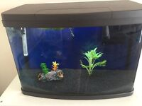 65 litre tropical fish tank and matching stand