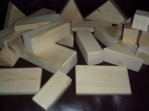 WOOD BUILDING BLOCKS  **like new