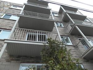 41/2  apartment for rent  montreal fully renovated 775.00