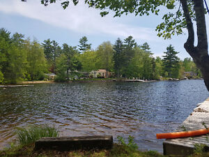 Summer Weekday escape at the Lake in Hubbards